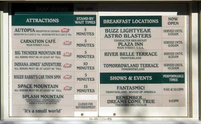 Disneyland Tour: Wait times